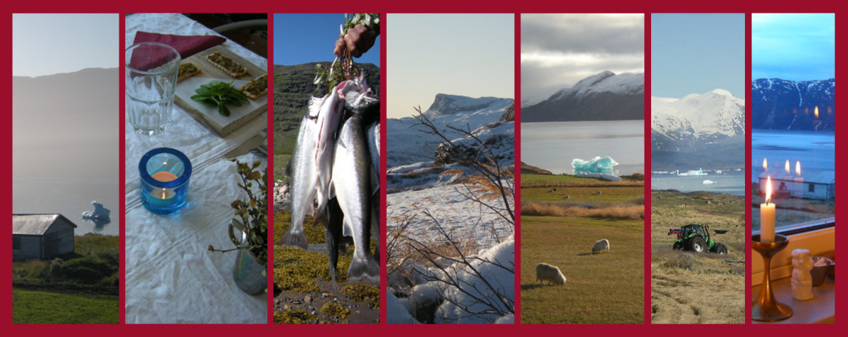 Ipiutaq guest farm, sheep farming, agro-tourism and arctic char fishing
