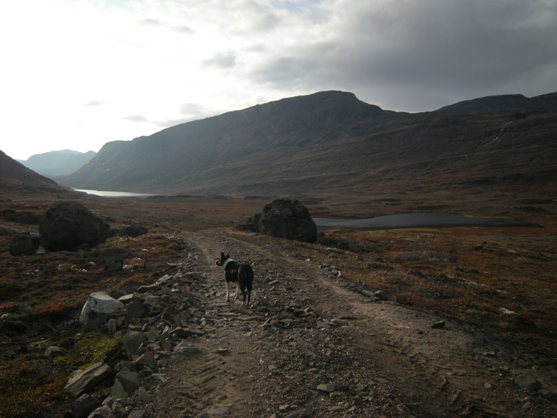 Ipiutaq guest farm, dirt road to Ilua valley